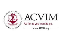 ACVIM - Freelance writing & communications services Montreal